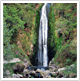 Local Attraction - Glenevin Waterfall